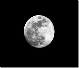 moon010 copy