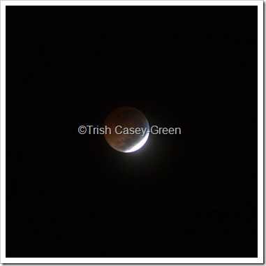 2010 December Moon (24 of 7)