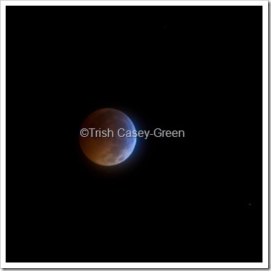 2010 December Moon (26 of 7)