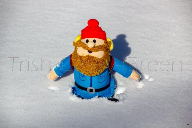 #Snowpocalypse2016